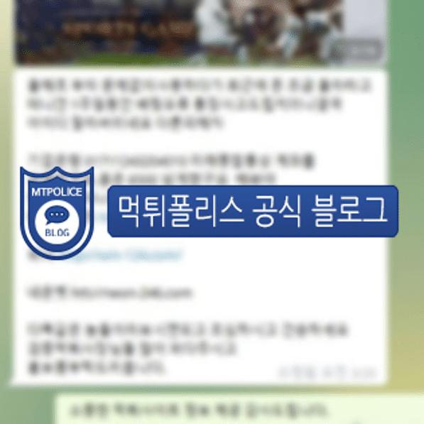 헌터벳 회원 대화 내용